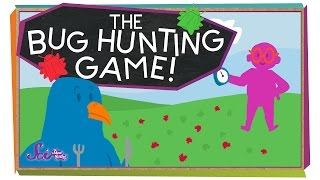 The Bug Hunting Game!