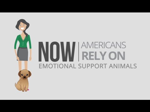 need an emotional support animal letter speak with a therapist today