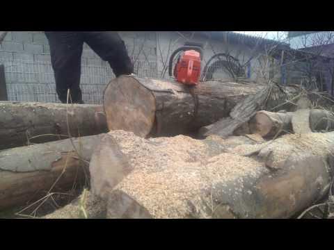Husqvarna 55 - la taiat de lemne
