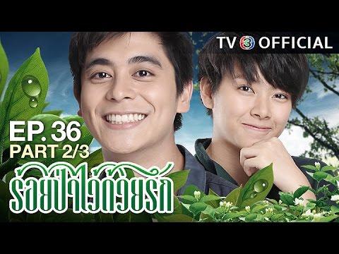 ย้อนหลัง ร้อยป่าไว้ด้วยรัก RoiPaWaiDuayRak EP.36 ตอนที่ 2/3 | 27-02-60 | TV3 Official