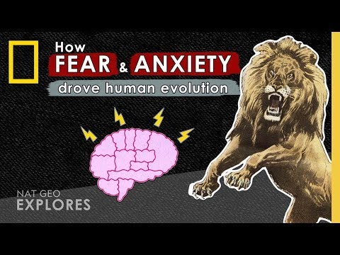 How Fear and
