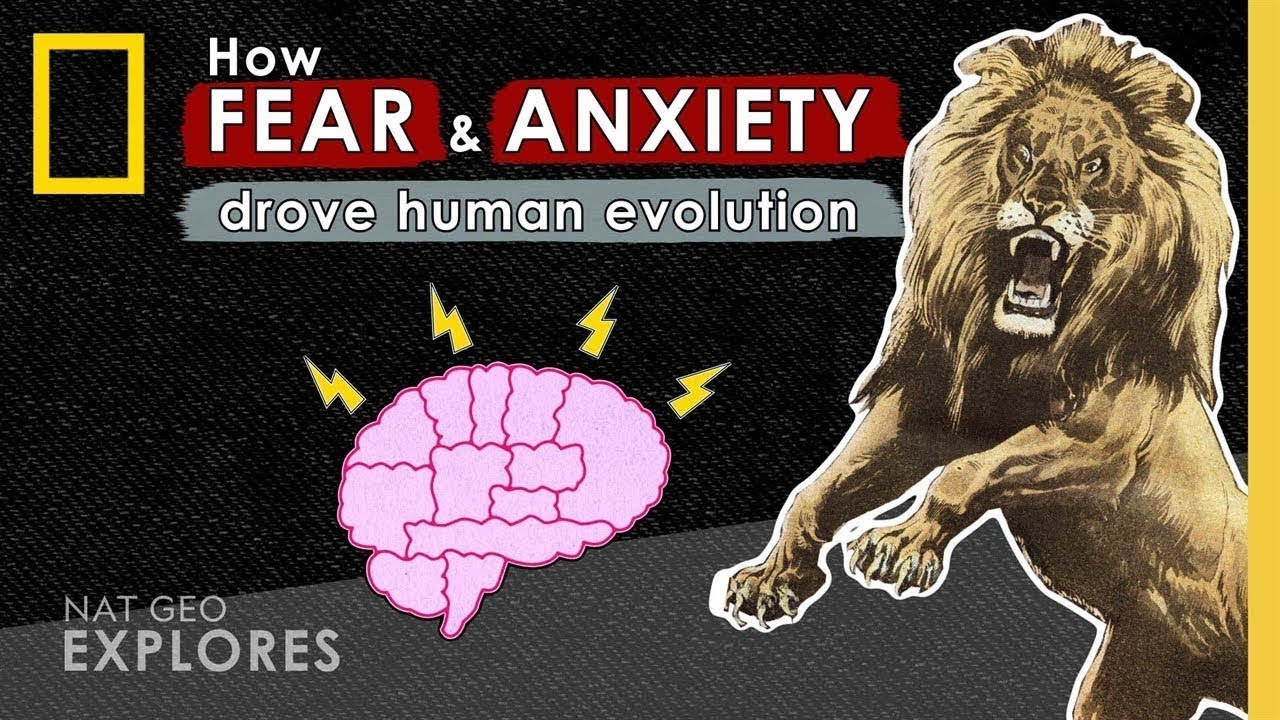 How Fear and Anxiety Drove Human Evolution   Nat Geo Explores