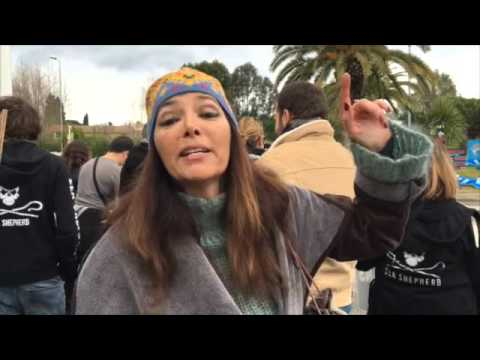 Animal Rights Activists lay siege at Marineland Antibes, France