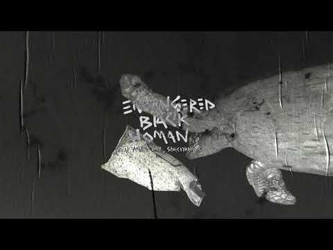 Robert Glasper - Endangered Black Woman (feat. Andra Day, Staceyann Chin)
