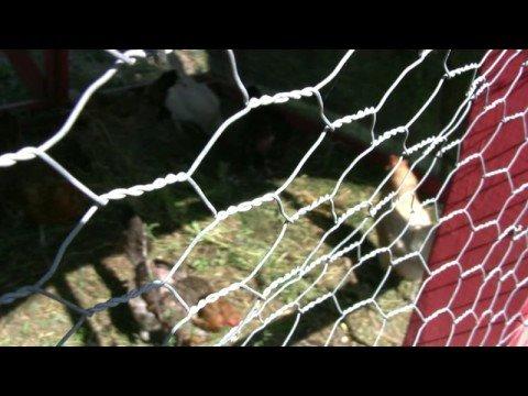 Student Organic Farm, University of Minnesota