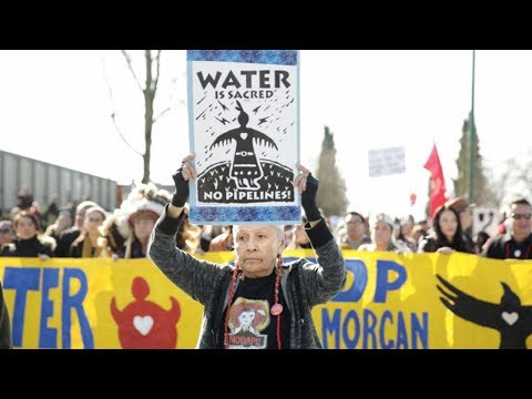 Major Legal Victory: Canada's Kinder Morgan Pipeline Stopped