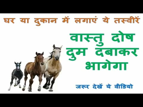 Vastu Images Pictures For Home House In Hindi | Vastu Shastra Tips Home |running Horse Picture Vastu