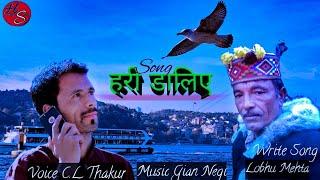 Latest kullvi natti ।। C.L Thakur ।। Gian Negi।। Higher Studio