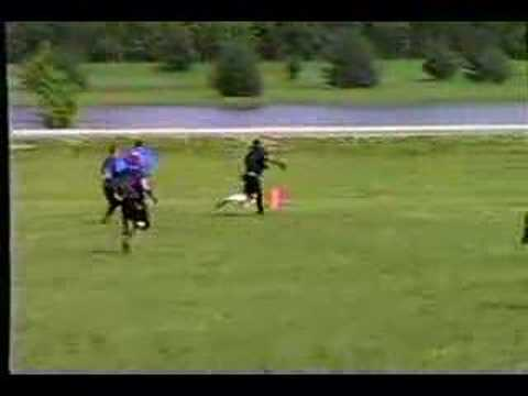 2003 Bears vs. Colts W6 Clip 2