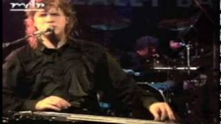 Jeff Healey - Angel Eyes