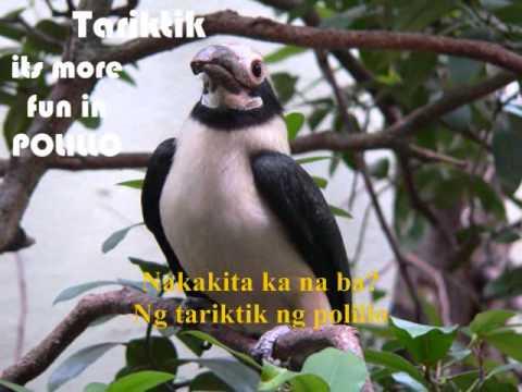 Quezon, Tara na! (official music video).wmv
