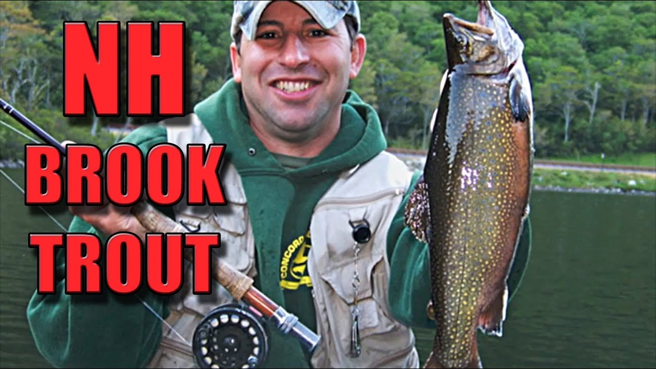 Fly fishing for brook trout in new hampshire youtube for New hampshire fishing