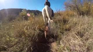 Palo Duro Canyon State Park Horseback Adventure!