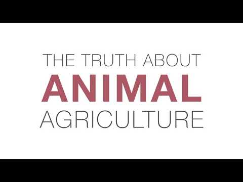 The Truth About Animal Agriculture