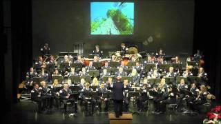Silva Nigra Orchester der FFW Dirlos