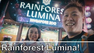 Singapore Rainforest Lumina - New attraction