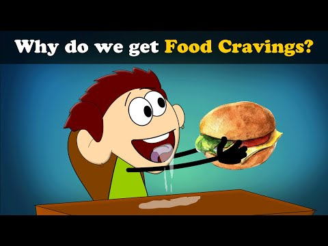 Why do we get Food Cravings? | #aumsum #kids #science #education #children