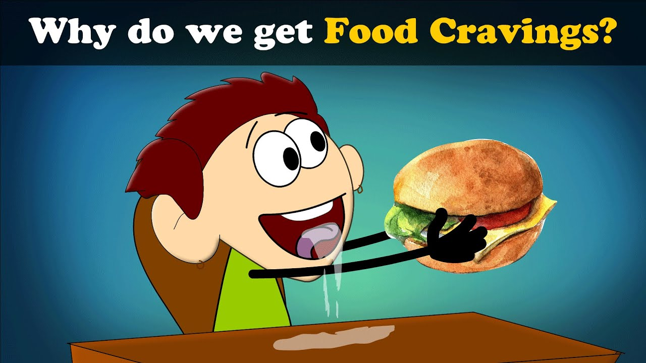 Why do we get Food Cravings? | #aumsum #kids #science ...