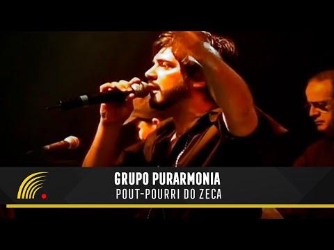 Grupo purarmonia pout pourri do zeca um samba diferente