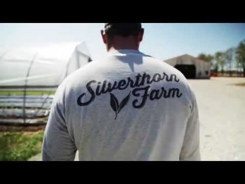 Full Circle Farming at Silverthorn Farm