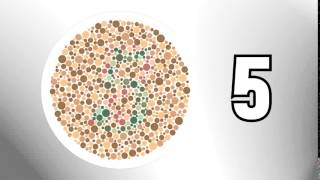 are you color blind test