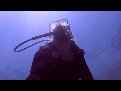 Diving with Ali Al Khoor