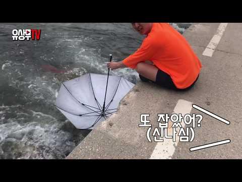 도시어부 유상무  우산으로 10분만에 물고기 20마리잡는 법