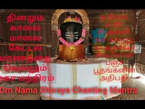 Om nama shivaya siddhar  chanting