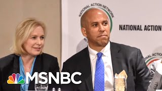 Who Are The Top 2020 Democratic Contenders? | AM Joy | MSNBC