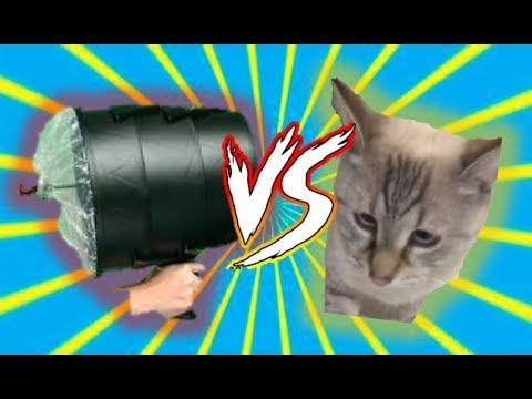 Air Cannon VS Cat