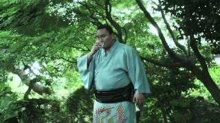 Hakuho sake Kirishima, dégustation en forêt