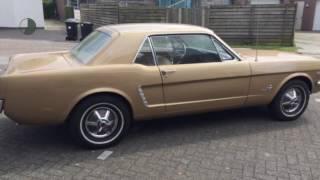 Ford USA Mustang 260 ci