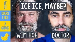 Doctor Dissects the Wim Hof Method  Cold Hard Science Analysis