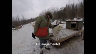 Muddy Paw Sled Dog Kennel & Raft NH
