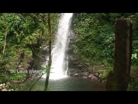 Costa Rica. Monte Verde Travels