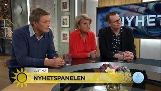 Schlingmann: Nästa Vänsterledare blir jobbigare för Löfven - Nyhetsmorgon (TV4)
