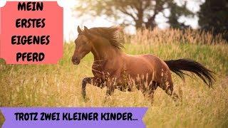 Mein erstes eigenes Pferd trotz kleiner Kinder | P.R.E. Honorio