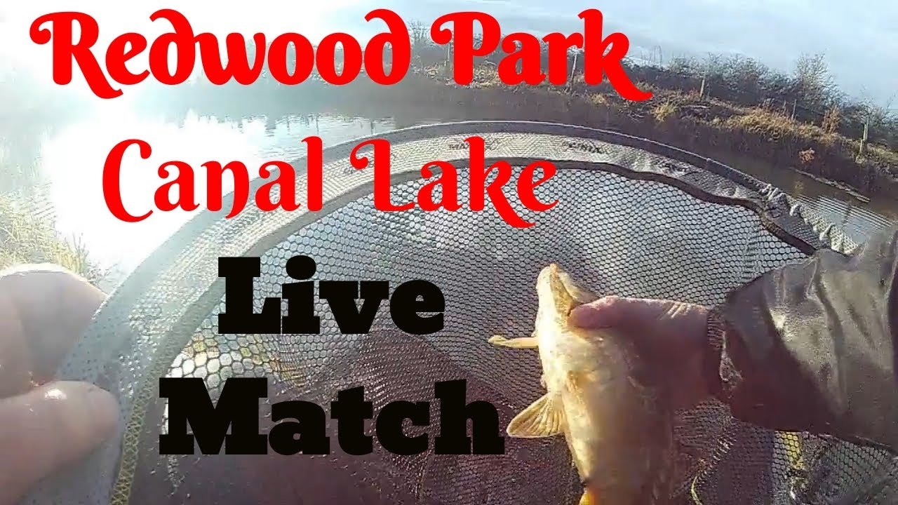 Live Match Fishing, Redwood Park, winter Snake lake