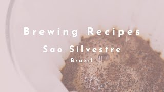 Sao Silvestre (Brazil) video