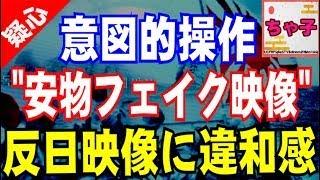 【韓国】『怪しい.』TVの反日映像に違和感!安物フェイク映像で韓国の反日感情を意図的操作www thumbnail