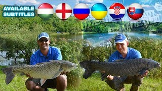 Summer Feeder Fishing Adventures - Grass Carp in Crosshairs  with Gábor Sipos and Tamás Putz