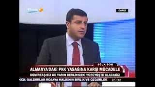 Selahattin Demirtaş STÊRK TV'deydi [15.11.2013]