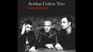 Video Avishai Cohen - Pinzin Kinzin download MP3, 3GP, MP4, WEBM, AVI, FLV Oktober 2018