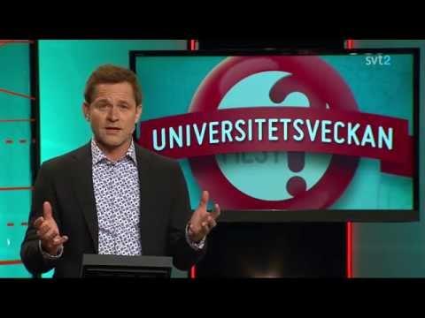 Vem Vet Mest: Thorbjörn Fälldins barnbarn...Håll Gränsen!