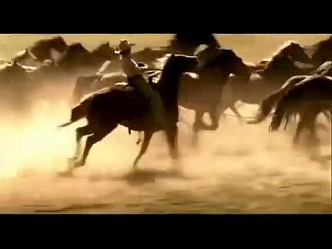 caballo salvaje wild horsecomercial marlboro