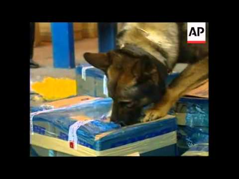 MEXICO: DRUG SNIFFING DOGS