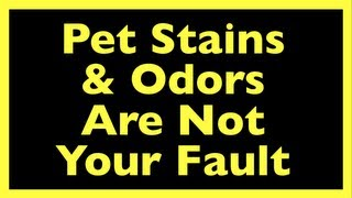 Pet Stain Remover Truth: Ex-Carpet Cleaner Comes Clean About Pet Stain & Odor Removal