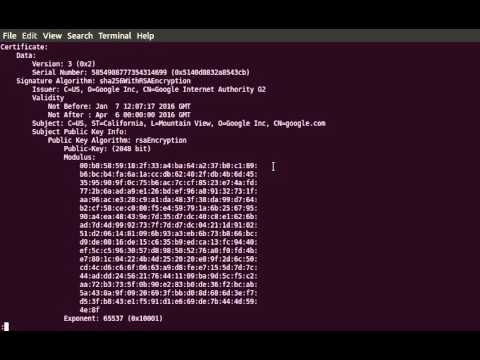 View the contents of a PEM encoded certificate with OpenSSL - YouTube