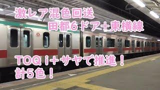 東急5000系激レア混色! 田都6ドア+東横線+TOQ i+サヤ+TOQ i 計5色!