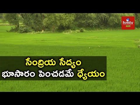 Enhancing Soil Nutrients by Organic Farming | hmtv Agri